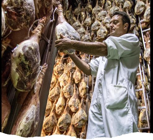 Uno de los maestros jamoneros de Vallejo supervisando el proceso de curación del jamón serrano en los secaderos de Trevélez