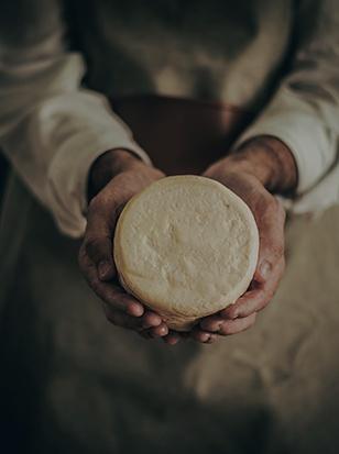 quesos artesanal